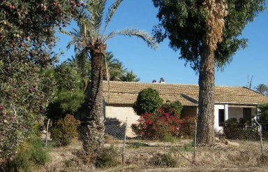 Country house - Reventa - Elche - Rural